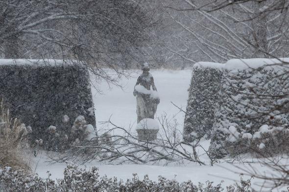 wp statue
